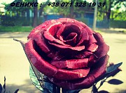 Кованые розы Донецк Донецк