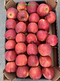 Продаем яблоки Москва