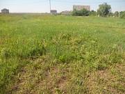 продажа земельного участка 17 соток в копцевы хутора липецкого района липецкой области Липецк