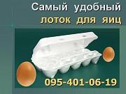 Лоток для яиц из ВПС