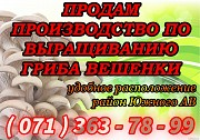 Продажа работающего грибного производства по выращиванию вешенки Донецк