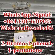 2-бром-1-фенил-1-пентанон cas 49851-31-2 Москва