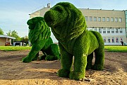 Скульптура топиари от мастерской декора «Студии ОМИ » Москва